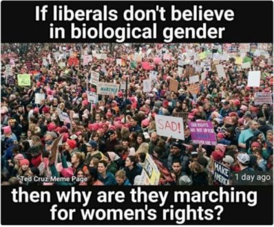 Liberals-and-Gender