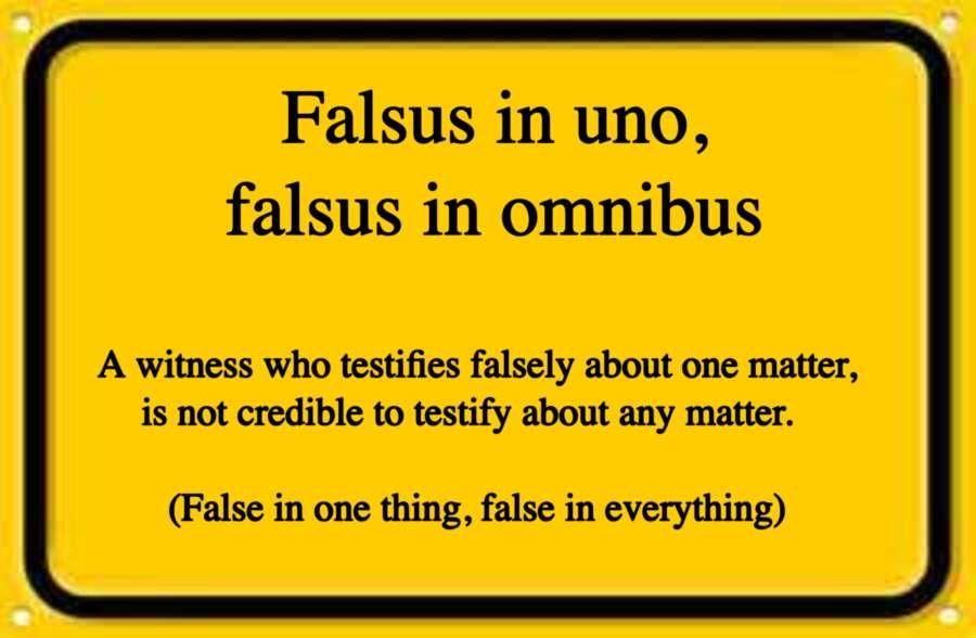 FALSUS MEME FINAL