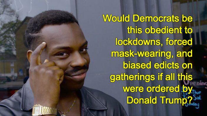 Obedient Democrats